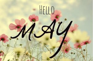 tucson spa solai hello may flowers