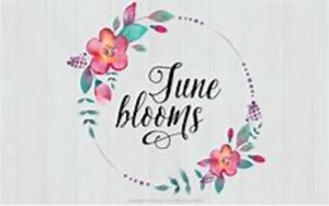 spa solai june blooms